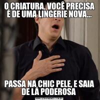 O CRIATURA, VOCÊ PRECISA É DE UMA LINGERIE NOVA...PASSA NA CHIC PELE, E SAIA DE LÁ PODEROSA