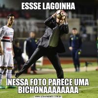 ESSSE LAGOINHANESSA FOTO PARECE UMA BICHONAAAAAAAA