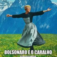 BOLSONARO É O CARALHO