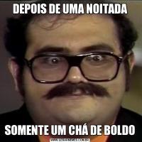 DEPOIS DE UMA NOITADASOMENTE UM CHÁ DE BOLDO
