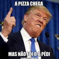 A PIZZA CHEGAMAS NÃO FOI O Q PEDI