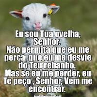 Eu sou Tua ovelha, Senhor.  Não permita que eu me perca, que eu me desvie do Teu rebanho.  Mas se eu me perder, eu Te peço , Senhor, Vem me encontrar.
