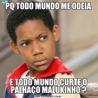 PQ TODO MUNDO ME ODEIAE TODO MUNDO CURTE O PALHAÇO MALUKINHO ?