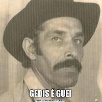 GEDIS É GUEI