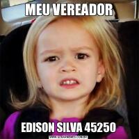 MEU VEREADOREDISON SILVA 45250