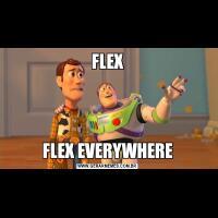 FLEXFLEX EVERYWHERE