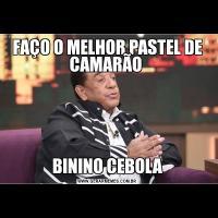 FAÇO O MELHOR PASTEL DE CAMARÃO BININO CEBOLA