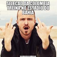 SELECAO DA COLOMBIA TREINA NO ESTADIO DO BAHIA