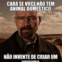 CARA SE VOCE NÃO TEM ANIMAL DOMÉSTICONÃO INVENTE DE CRIAR UM