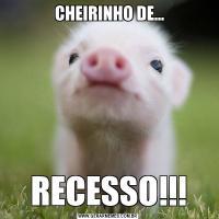 CHEIRINHO DE...RECESSO!!!