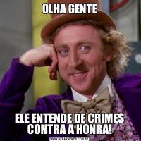 OLHA GENTEELE ENTENDE DE CRIMES CONTRA A HONRA!