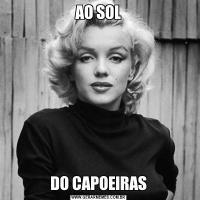 AO SOLDO CAPOEIRAS