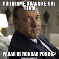 GUILHERME, QUANDO É  QUE TU VAIPARAR DE ROUBAR PORCO?