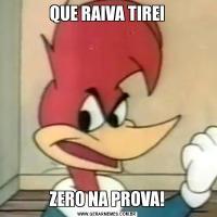 QUE RAIVA TIREIZERO NA PROVA!