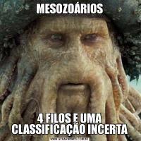 MESOZOÁRIOS4 FILOS E UMA CLASSIFICAÇÃO INCERTA