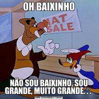 OH BAIXINHONÃO SOU BAIXINHO, SOU GRANDE, MUITO GRANDE. . .