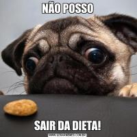 NÃO POSSOSAIR DA DIETA!