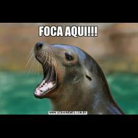 FOCA AQUI!!!