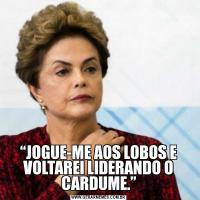 """""""JOGUE-ME AOS LOBOS E VOLTAREI LIDERANDO O CARDUME."""""""
