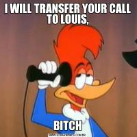 I WILL TRANSFER YOUR CALL TO LOUIS,BITCH