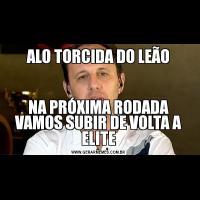 ALO TORCIDA DO LEÃONA PRÓXIMA RODADA VAMOS SUBIR DE VOLTA A ELITE