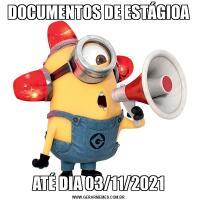DOCUMENTOS DE ESTÁGIOAATÉ DIA 03/11/2021