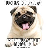 EU OLHANDO O CELULAR ESPERANDO A TALITA RESPONDER