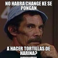 NO HABRA CHANGE KE SE PONGANA HACER TORTILLAS DE HARINA?