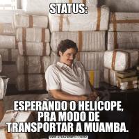 STATUS:ESPERANDO O HELICOPE, PRA MODO DE TRANSPORTAR A MUAMBA.