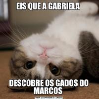 EIS QUE A GABRIELA DESCOBRE OS GADOS DO MARCOS
