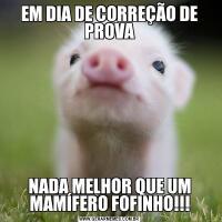 EM DIA DE CORREÇÃO DE PROVANADA MELHOR QUE UM MAMÍFERO FOFINHO!!!