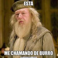 ESTÁME CHAMANDO DE BURRO