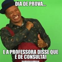 DIA DE PROVA...E A PROFESSORA DISSE QUE É DE CONSULTA!