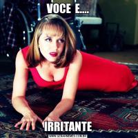 VOCE  E....IRRITANTE