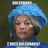 BOLSONARO....É VOCÊ BOLSONARO?