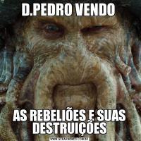 D.PEDRO VENDO AS REBELIÕES E SUAS DESTRUIÇÕES