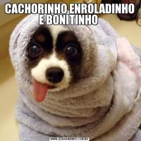 CACHORINHO ENROLADINHO E BONITINHO