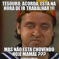 TESOURO, ACORDA, ESTA NA HORA DE IR TRABALHAR !!!MAS NÃO ESTA CHOVENDO HOJE MAMÃE ???
