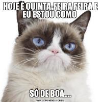 HOJE É QUINTA-FEIRA FEIRA E EU ESTOU COMO SÓ DE BOA....