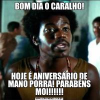 BOM DIA O CARALHO!HOJE É ANIVERSÁRIO DE MANO PORRA! PARABÉNS MOI!!!!!!
