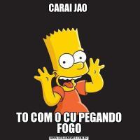 CARAI JAO TO COM O CU PEGANDO FOGO