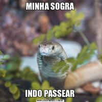 MINHA SOGRAINDO PASSEAR