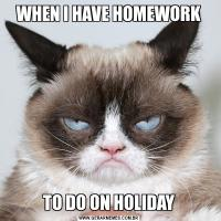 WHEN I HAVE HOMEWORKTO DO ON HOLIDAY
