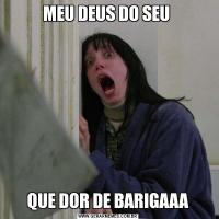 MEU DEUS DO SEU QUE DOR DE BARIGAAA