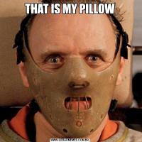 THAT IS MY PILLOW