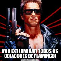 VOU EXTERMINAR TODOS OS ODIADORES DE FLAMINGO!