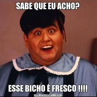 SABE QUE EU ACHO?ESSE BICHO É FRESCO !!!!