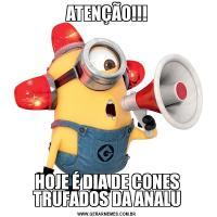 ATENÇÃO!!!HOJE É DIA DE CONES TRUFADOS DA ANALU