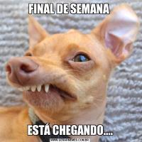 FINAL DE SEMANA ESTÁ CHEGANDO....