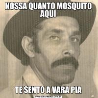 NOSSA QUANTO MOSQUITO AQUITE SENTO A VARA PIA